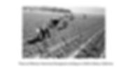 Screen Shot 2020-05-05 at 4.41.47 PM.png