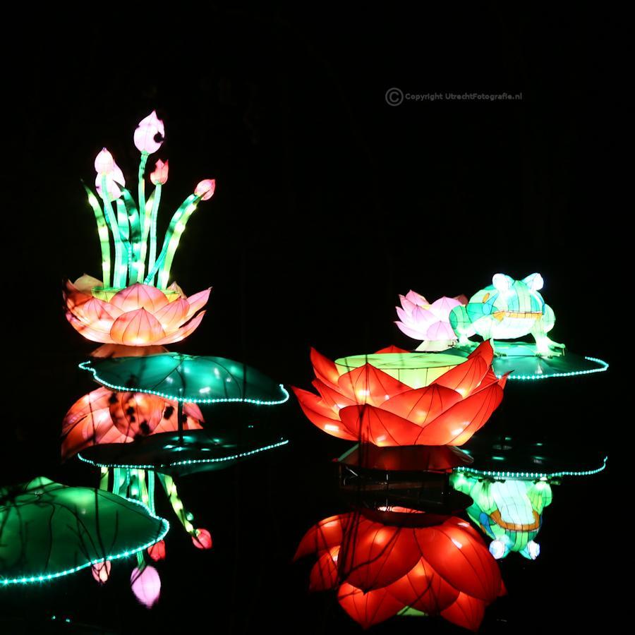 20141230 China Lights 4a