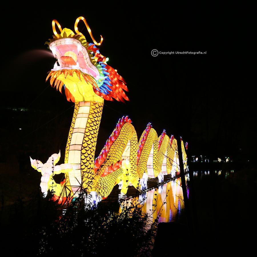 20141230 China Lights 23f