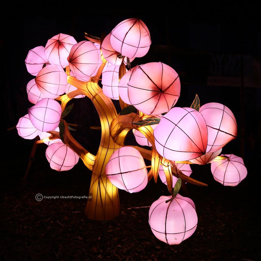 20141230 China Lights 10