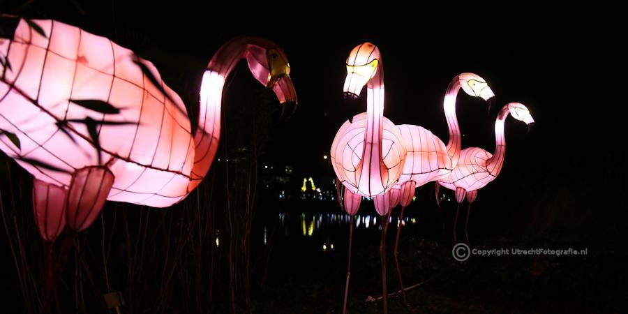 20141230 China Lights 21