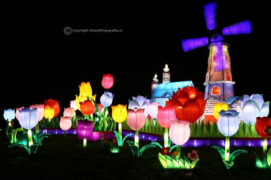20141230 China Lights 18
