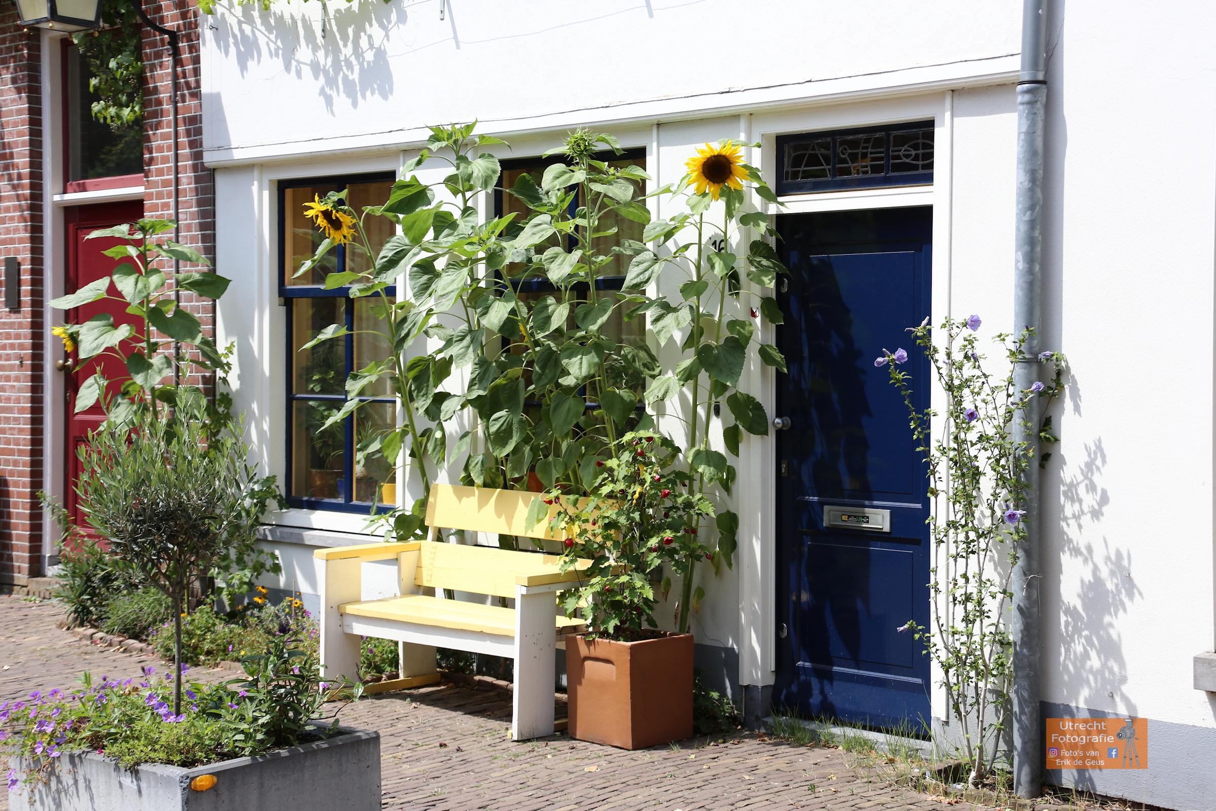 20180720 Juttevrouwenstraat 01