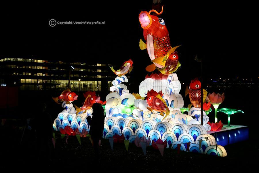 20141230 China Lights 8