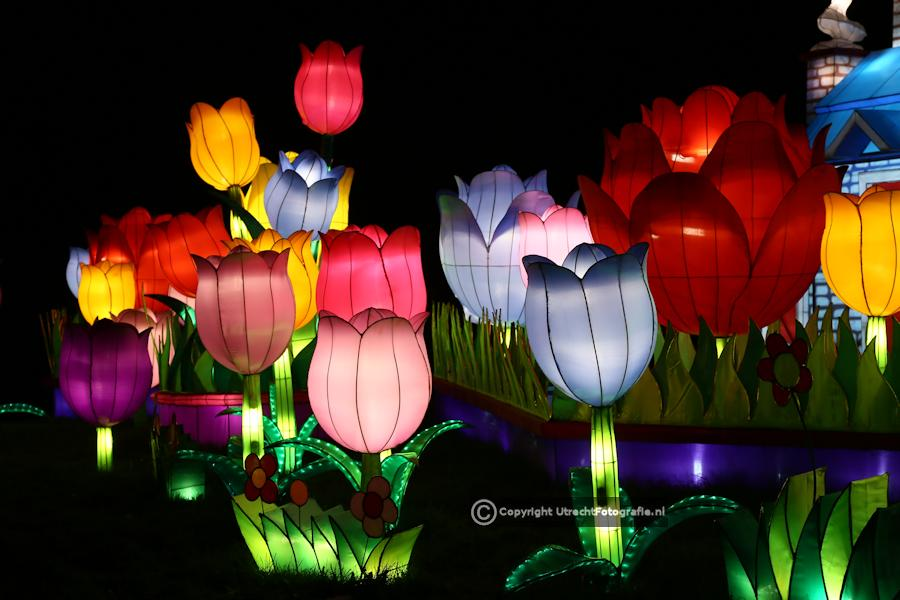 20141230 China Lights 18a