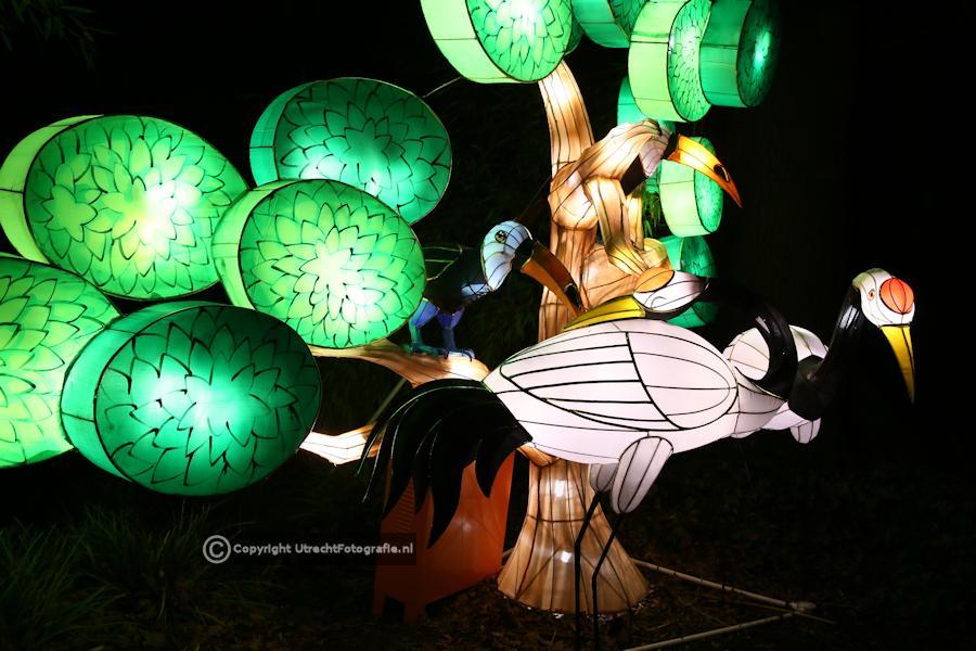 20141230 China Lights 22