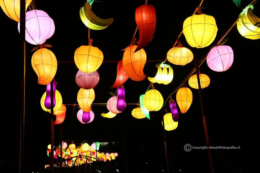 20141230 China Lights 3