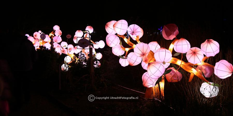 20141230 China Lights 10b