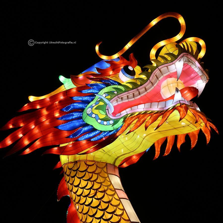 20141230 China Lights 23g