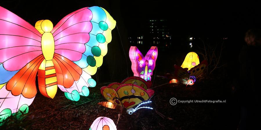 20141230 China Lights 20
