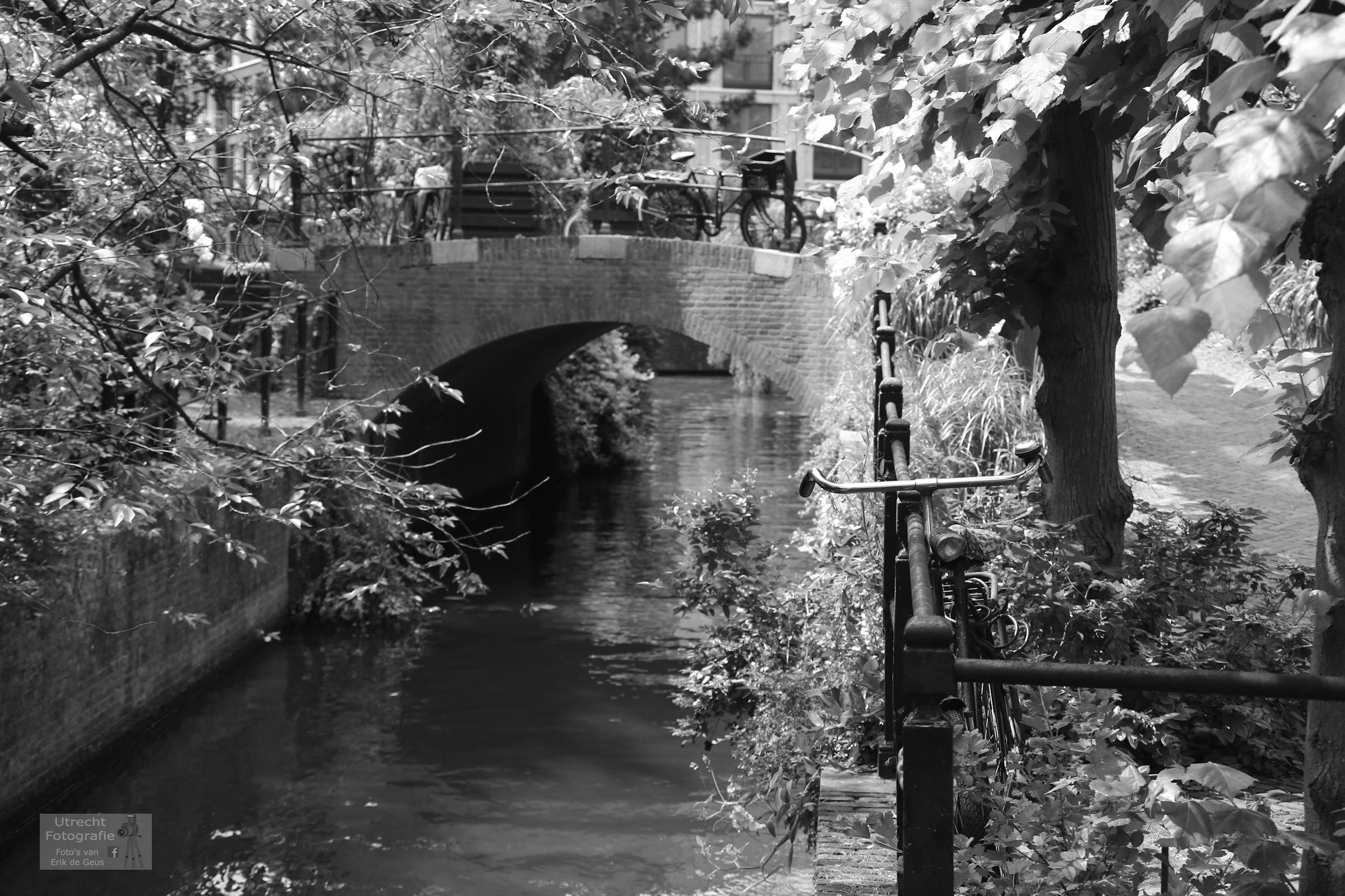 20180603 Zwartewater bij Keizersgracht 4