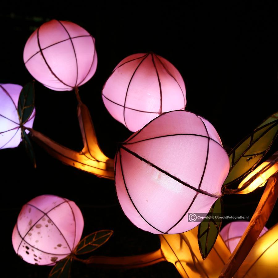 20141230 China Lights 10a