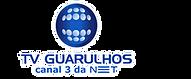 logo-tv-guarulhos-site.png