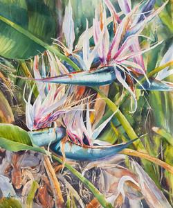 Flock of Giants, watercolour
