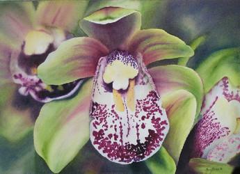 Orchids, Orchids, Orchids, watercolour, 64 x 81cm