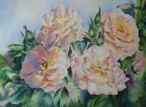 Rose Quartet, watercolour, 70 x 58cm