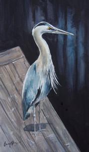 Blue Heron, watercolour 51 x 36cm