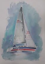 Woolley Knickers, watercolour, 16 x 20cm
