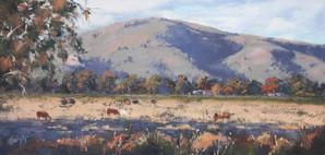 Namoi Valley, oil