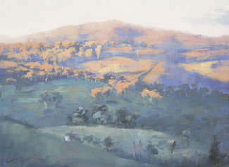 Afternoon Sunlight on the Hill, oil, 45.5 x 37