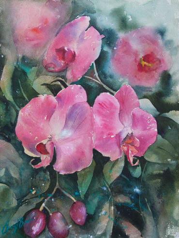 Moth Orchid, watercolour, 31 x 4cm image only