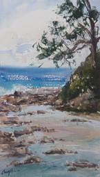 Rockpools @ Bateau Bay, watercolour 37 x 53cm, plein air