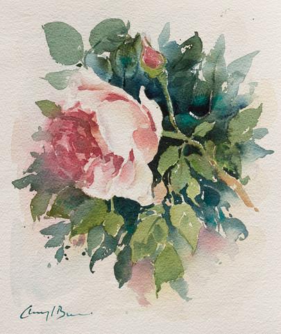 Rose, watercolour,_.jpg
