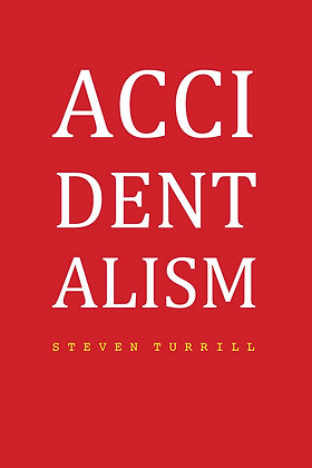 Accidentalism by Steven Turrill