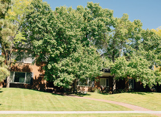 UNDER CONTRACT AVENUES HOME. 1.29 ACRES II $1,590,000