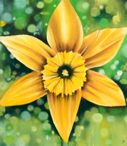 Daffodil Detail