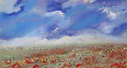 Poppy Landscape 3