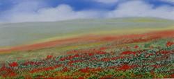 Poppy Landscape 2