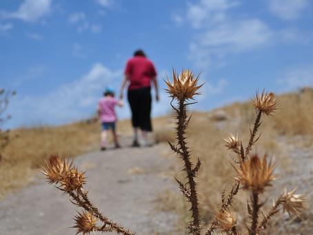 הורים,ילדים ונפרדות.