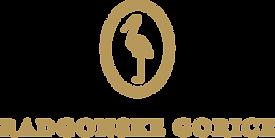 RG-logotip-e1515354043527.png