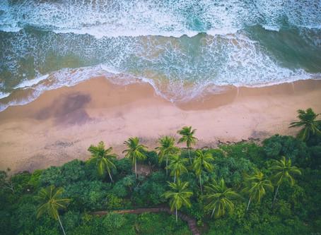 Sri Lanka's South Coast Paradise