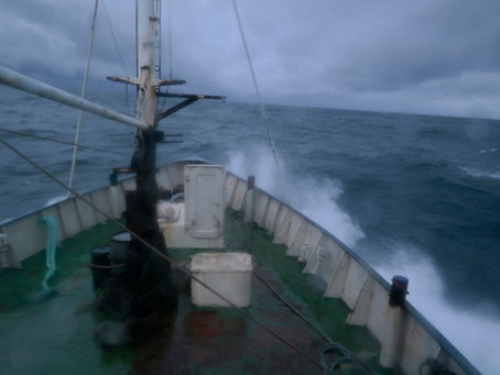Terugblik: Overtocht van Hamburg naar Stellendam (2015)