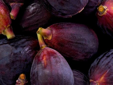 Black Mission Fig or Brown Turkey?