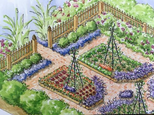 Kitchen Garden - Potager