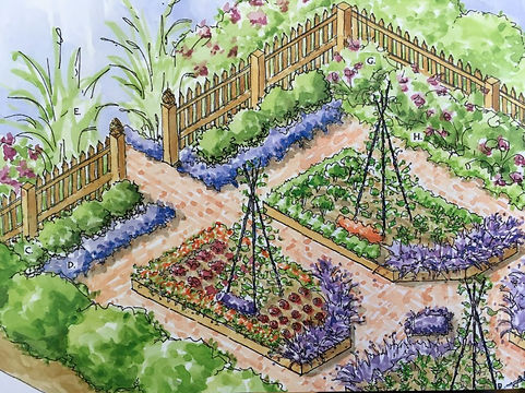 poteger garden.jpg