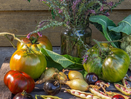 It's Not Too Late to Plant a Garden That Will Thrive in the Heat