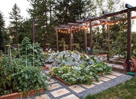Creative Garden & Landscape ideas #1