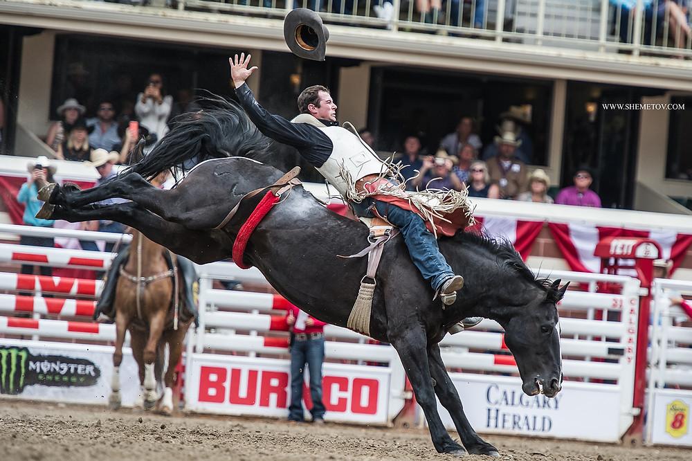 Calgary Stampede 2019. Bareback riding