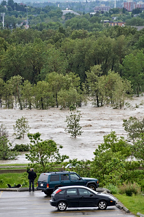 Calgary flood 2013, watching, trees under water, bow river, natural disaster.jpg