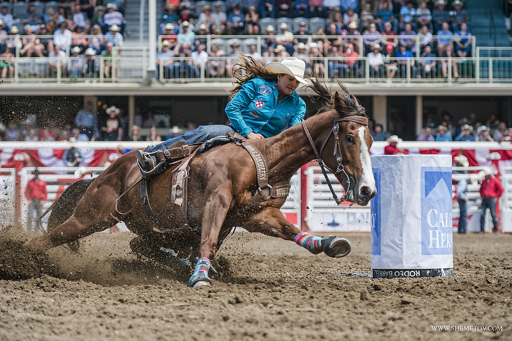 Calgary Stampede. Barrel Racing