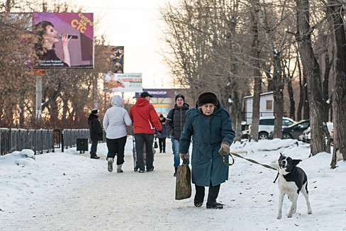Russia, Magnitigirsk, street, woman, dog, old, winter, snow, cold, new year.jpg