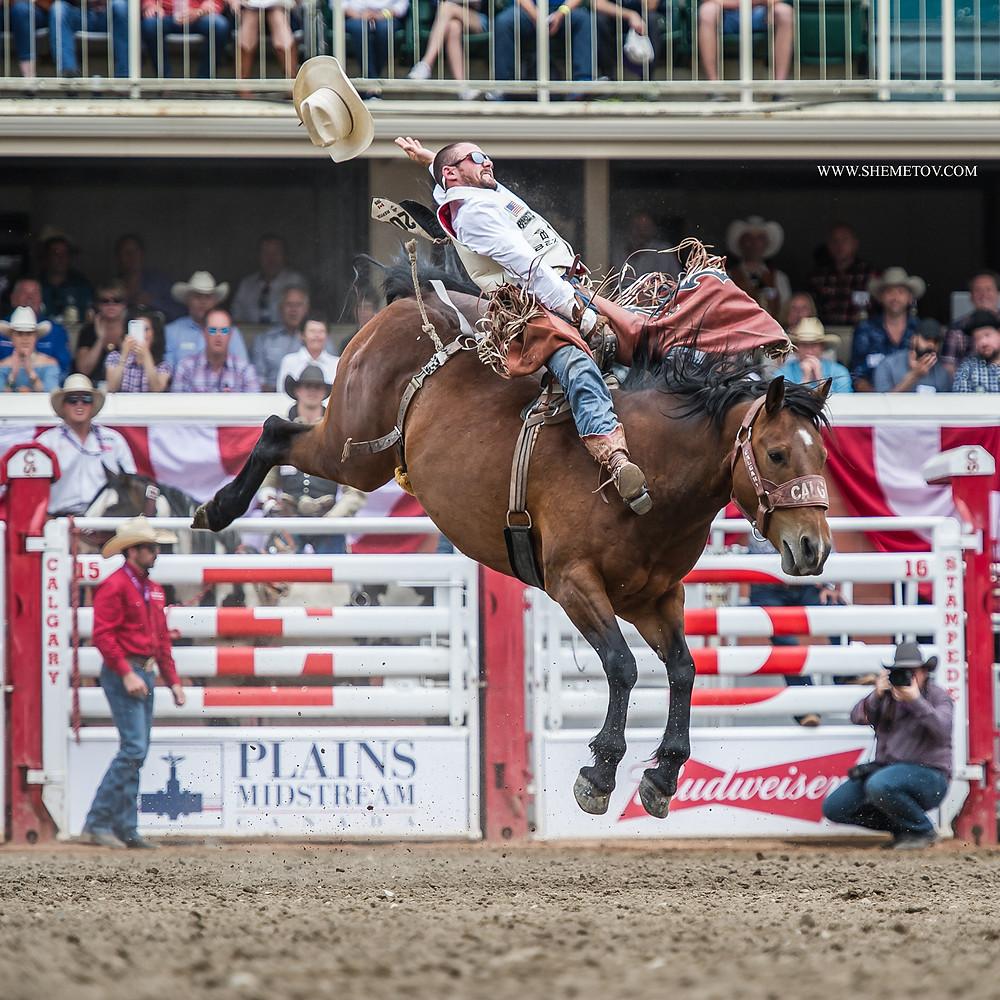Calgary Stampede. Saddle Bronc