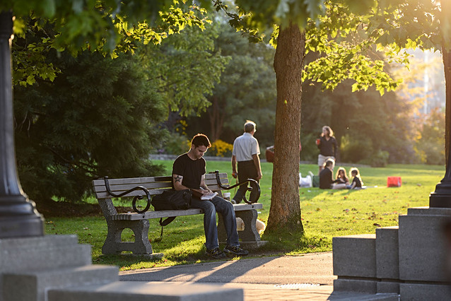 Vancouver, BC, British Columbia, Canada, park, reading, man, people, warm, sun, sunset, back lit, relaxing.jpg