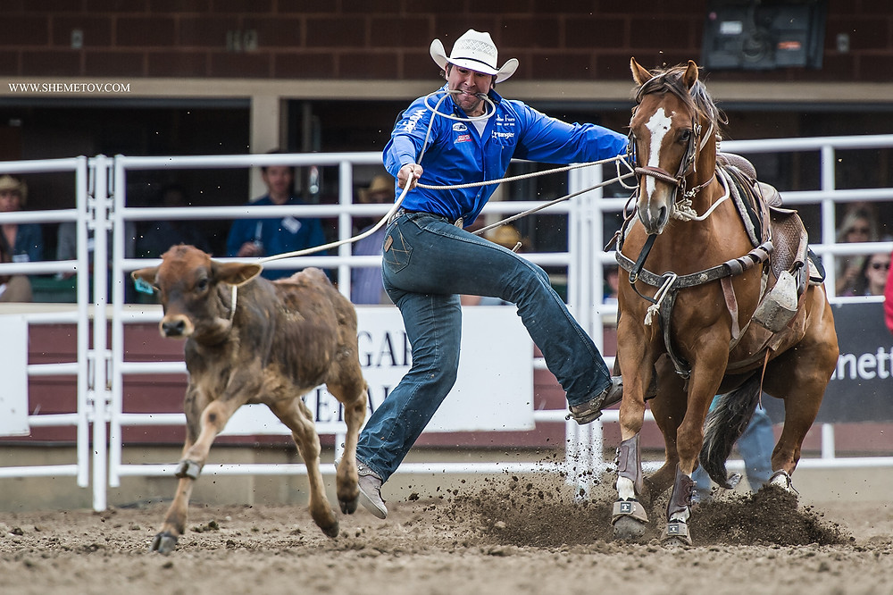 Calgary Stampede 2019. Tie-down Roping