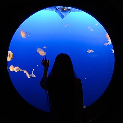 Vancouver aquarium, jelly fish, a woman, hand, water, glass, dark, round, window, long hair.jpg