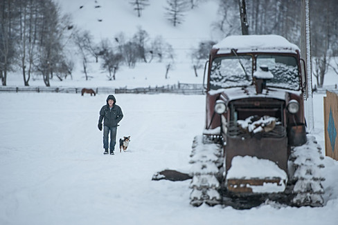 Russia, country side, Ural, snow, winter, man walks with a dog, horse, tractor,.jpg